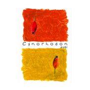 Cynorhodon